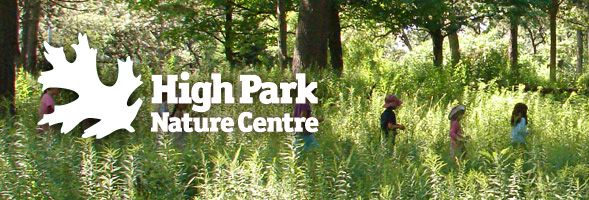 High Park Nature Centre Volunteer