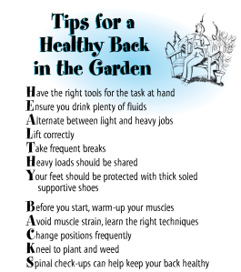 Tips for a healthy back in the garden
